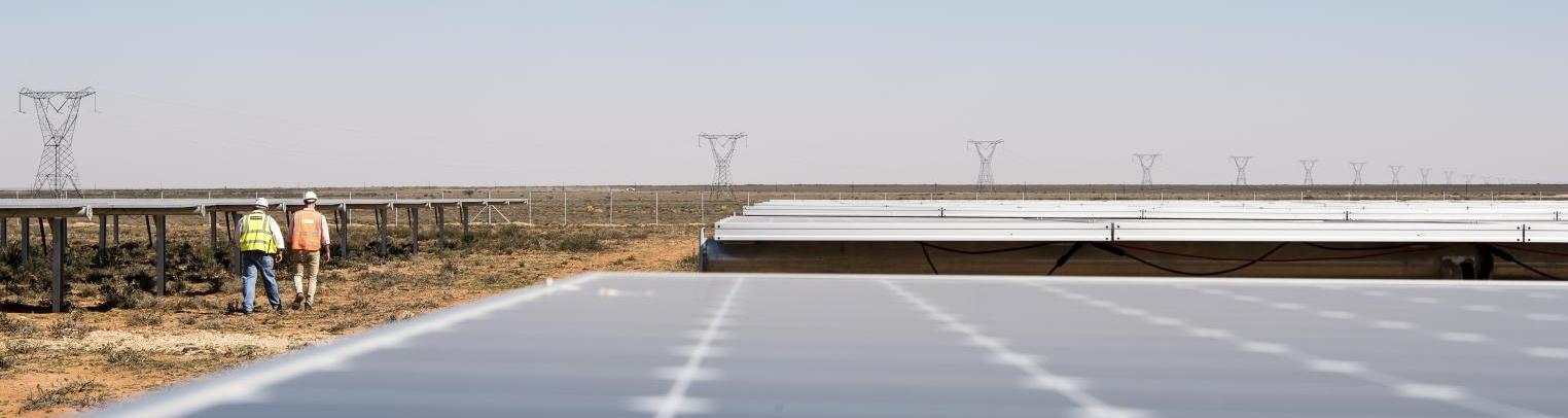 Renewables & low carbon energies